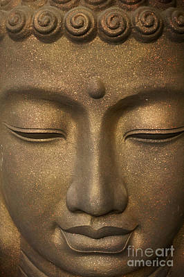 Photograph - Meditating Buddha by John  Mitchell