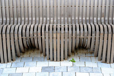 Photograph - Meditation Bench by Darla Wood