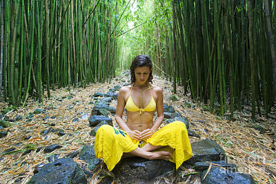Meditation In Bamboo Forest Art Print by M Swiet Productions
