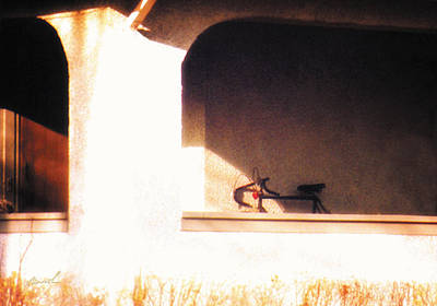 Roaring Red - Meditation In Sunlight 18 by The Art of Marsha Charlebois