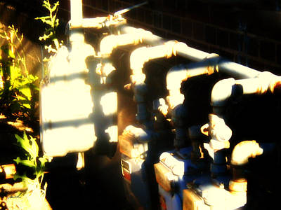 Photograph - Meditation In Sunlight 45 by The Art of Marsha Charlebois