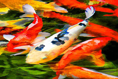 Photograph - Meditation On A Koi Pond by Brian Davis
