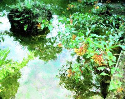 Mixed Media - Meditation Pond by Florene Welebny