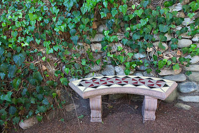 Photograph - Meditation Seat by Ram Vasudev
