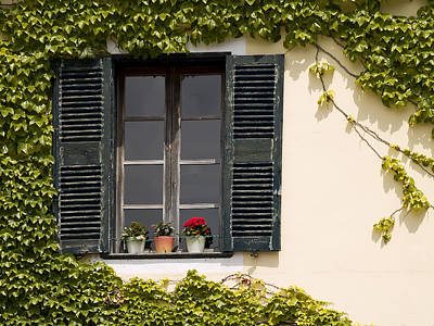 Photograph - Mediterranean Window by Pedro Cardona