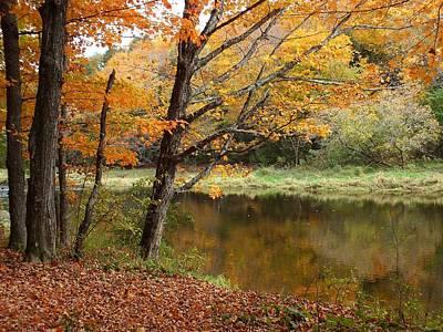 Photograph - Meduxnekeag River 1 by Gene Cyr