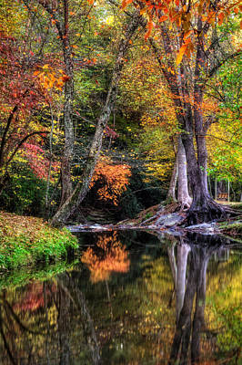 Photograph - Meeks Park In Fall by Greg Mimbs