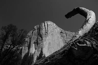 Photograph - Meet El Capitan by Kate Livingston