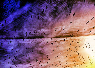Photograph - Meet Me Halfway Across The Sky 3 by Angelina Vick