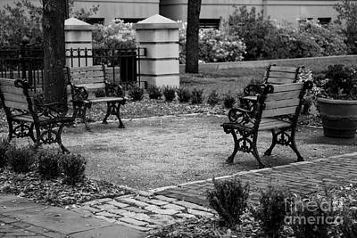 Park Benches Photograph - Meeting Place In Charleston by Carol Groenen