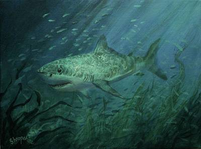 Megadolon Shark Print by Tom Shropshire