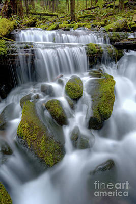 Olympic National Park Photograph - Megaflow by Marco Crupi