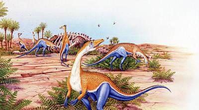 Carcass Photograph - Megapnosaurus Dinosaurs by Deagostini/uig
