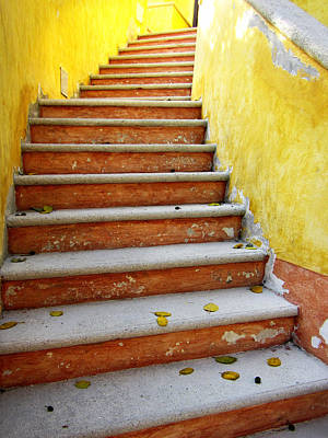 Photograph - Melon Steps by Marilyn Hunt