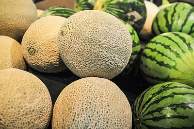 Photograph - Melons On Display Shelf At The Supremarket by Alex Grichenko
