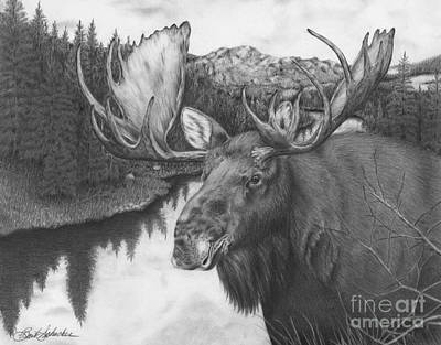 Drawing - Melozi River Moose by Barb Schacher
