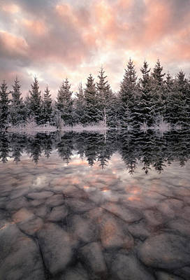 Hoarfrost Photograph - Melting by Christian Lindsten
