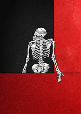 Digital Art - Memento Mori - Silver Human Skeleton On Red And Black Canvas by Serge Averbukh