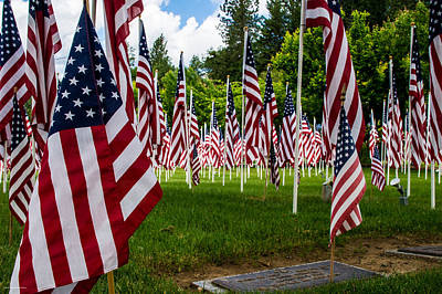 Photograph - Memorial Day Tribute by Mick Anderson