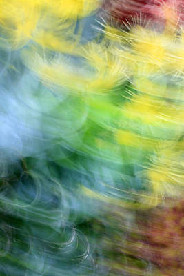 Photograph - Memories And Dreams by Munir Alawi