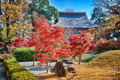 Photograph - Memories Of Autumn-1 by Tad Kanazaki