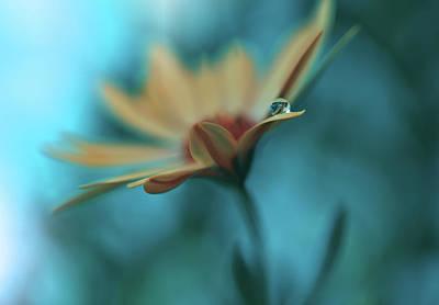 Floral Abstract Photograph - Memories Of Sea... by Juliana Nan