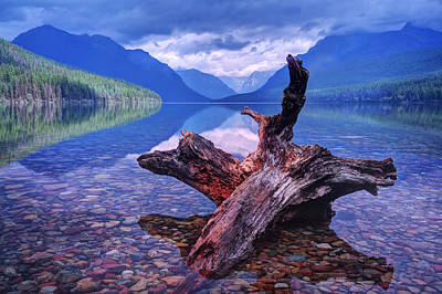 Photograph - Memory At Bowman Lake by Jaki Miller