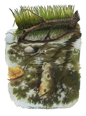 Sunfish  Memory Original by Peter E Malbrough