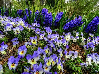 Photograph - Memphis - Dixon Gardens 002 by Lance Vaughn