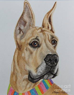 Pet Painting - Memphis The Great Dane by Megan Cohen