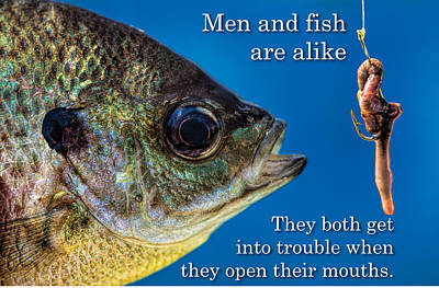 Photograph - Men And Fish Are Alike by John Crothers