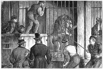 Cage Painting - Menagerie Sale, 1872 by Granger