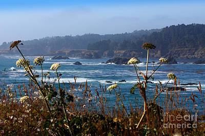 Photograph - Mendocino Coast by Patrick Witz