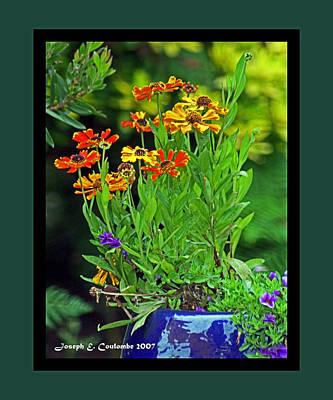 Digital Art - Mendocino Flower Vase by Joseph Coulombe