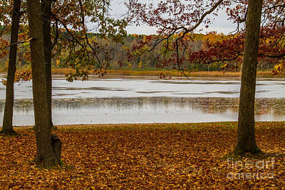 Photograph - Mendon Ponds by William Norton