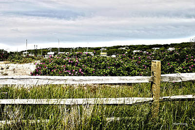 Photograph - Menemsha Memories by Michelle Wiarda