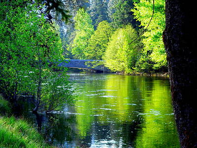 Photograph - Merced River Sentinel Bridge Green Trees Reflected by Jeff Lowe