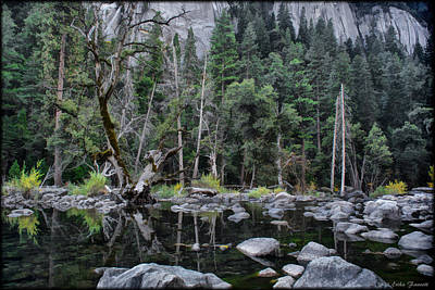 Photograph - Merced River by Erika Fawcett