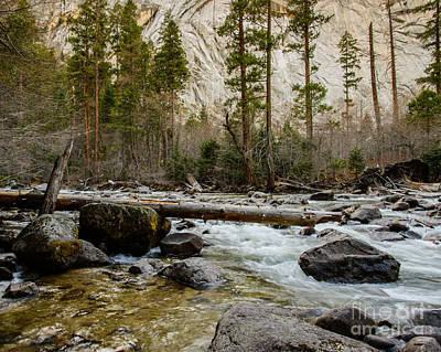 Merced River From Happy Isles 2 Art Print by Terry Garvin