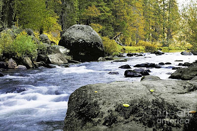 Photograph - Merced River In Yosemite by Richard J Thompson
