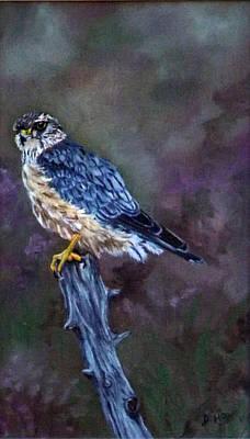 Merlin Original by Diane Howe