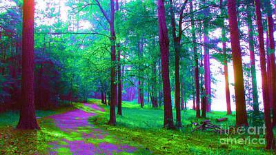 Merlin Digital Art - Merlin's Path by Cheryl Raber