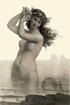 Seashell Design Drawing - Mermaid With Shell - At The Beach America by Private Collection