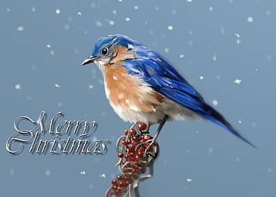 Bluebird Digital Art - Merry Christmas - Bluebird by Arie Van der Wijst