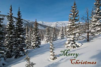 Photograph - Merry Christmas - Winter Wonderland by Cascade Colors
