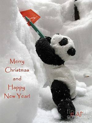 Photograph - Merry Christmas And Happy New Year From Ginny The Baby Panda by Ausra Huntington nee Paulauskaite