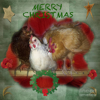Photograph - Merry Christmas by Donna Brown