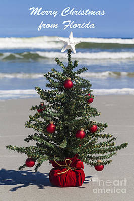 Photograph - Merry Christmas From Florida by Diane Macdonald