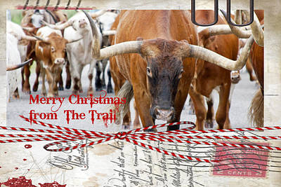 Longhorn Photograph - Merry Christmas From The Trail by Toni Hopper