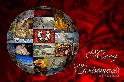 Photograph - Merry Christmas Globe by Lois Bryan